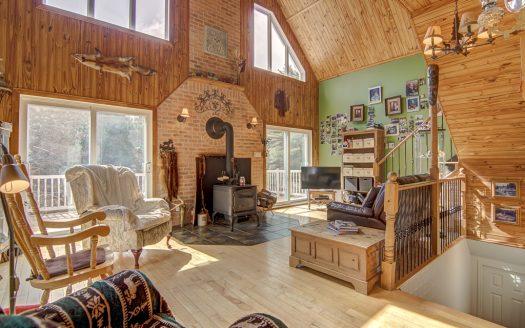 Bigénération à vendre rue Noiseux St-Jean-Baptiste Rive-Sud Flex Immobilier Salon avec poêle et bois et plafond cathédrale (rez-de-chaussée)