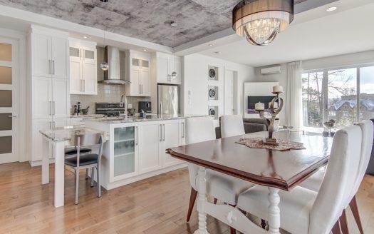 Condo de luxe a vendre Sherbrooke-Nord Flex Immobilier Conception à aire ouverte avec plafond de 9' de haut (rez-de-chaussée)
