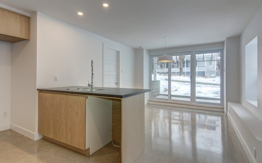 Condo de prestige à vendre Vieux-Nord Sherbrooke Flex Immobilier Salon avec foyer au bois et plafond de 9' (rez-de-chaussée)