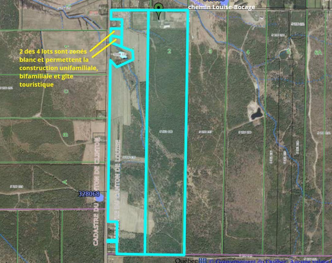 Plan des 4 lots inclus dans la propriété de 195 acres